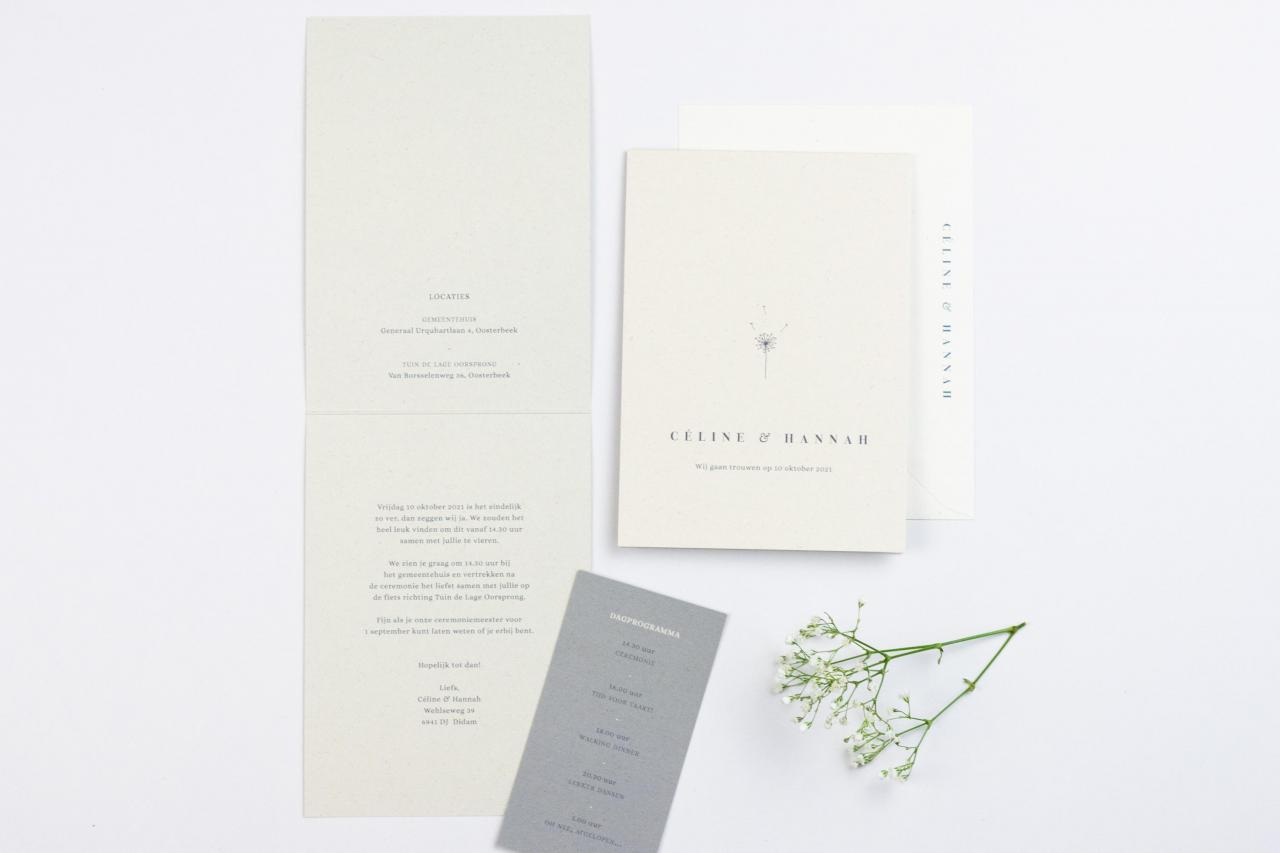 Staande trouwkaart met paardenbloempluis trouwkaart Illustratie Handgemaakt